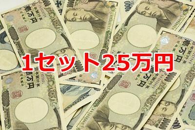 1セット25万円~